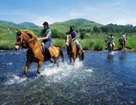 Horse-riding-landscape